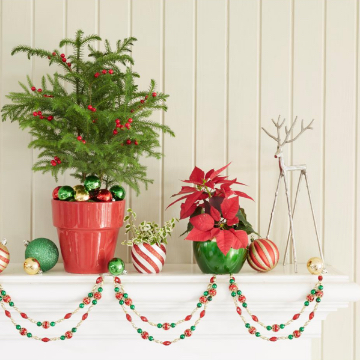 Up to 30% off Select Online Holiday Plants