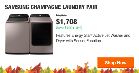 Samsung Champagne Laundry Pair