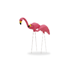 Yard Flamingos