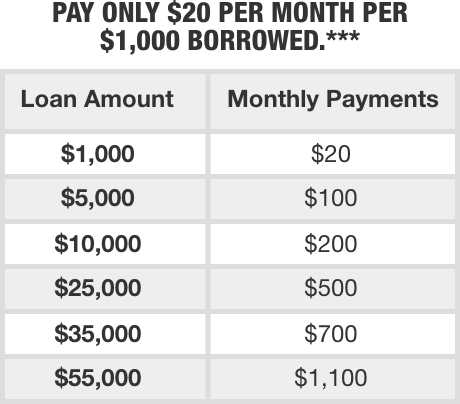 Project Loan Payment Chart Example