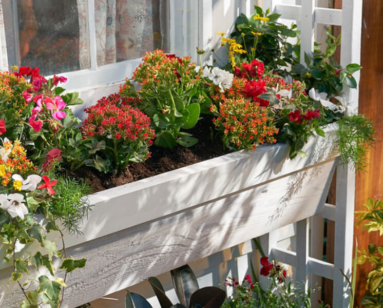 Build a Window Box Planter