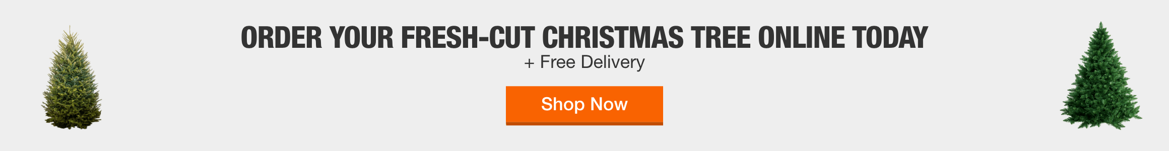 Order Your Fresh-Cut Christmas Tree Online Today + Free Delivery. Shop Now