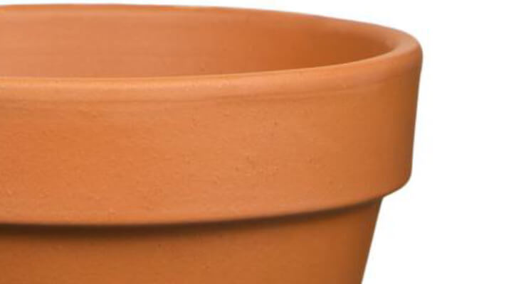 Clay Pots and Planters