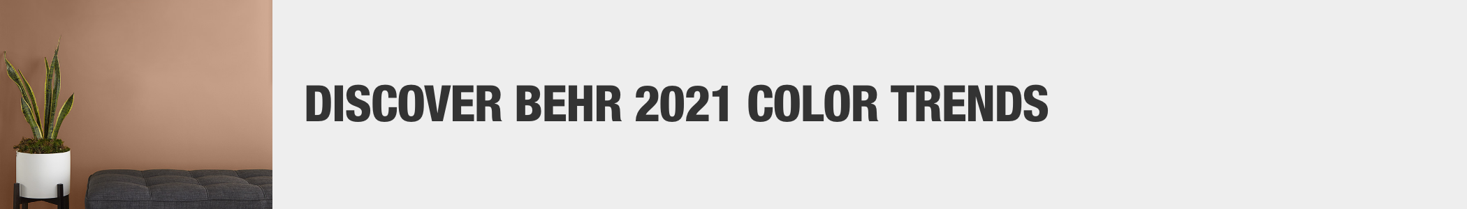 Discover Behr 2021 Color Trends