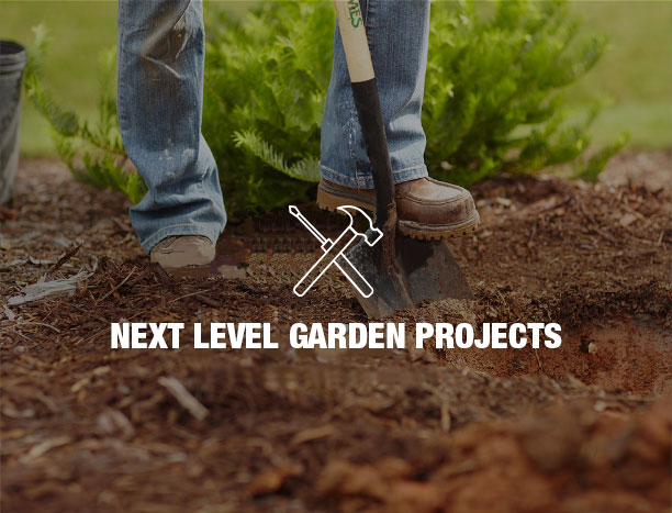 Next level garden projects