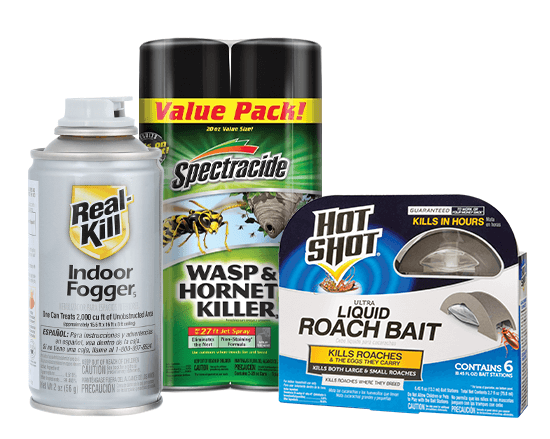 indoor fogger and roach bait