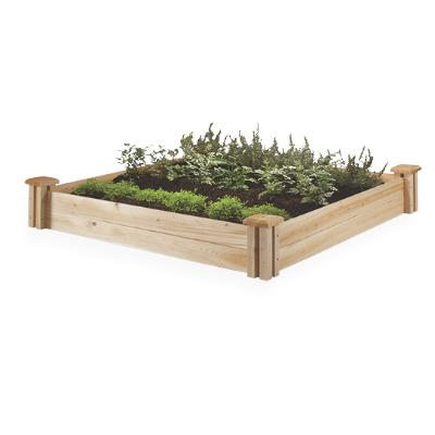 Raise garden beds