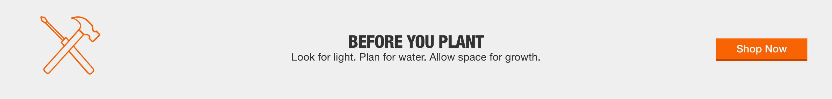 Before You Plant - Look for light. Plan for water. Allow space for growth. Shop Now